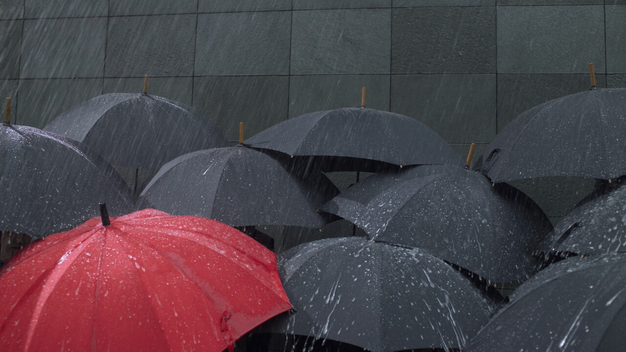 Wx umbrellas in rain