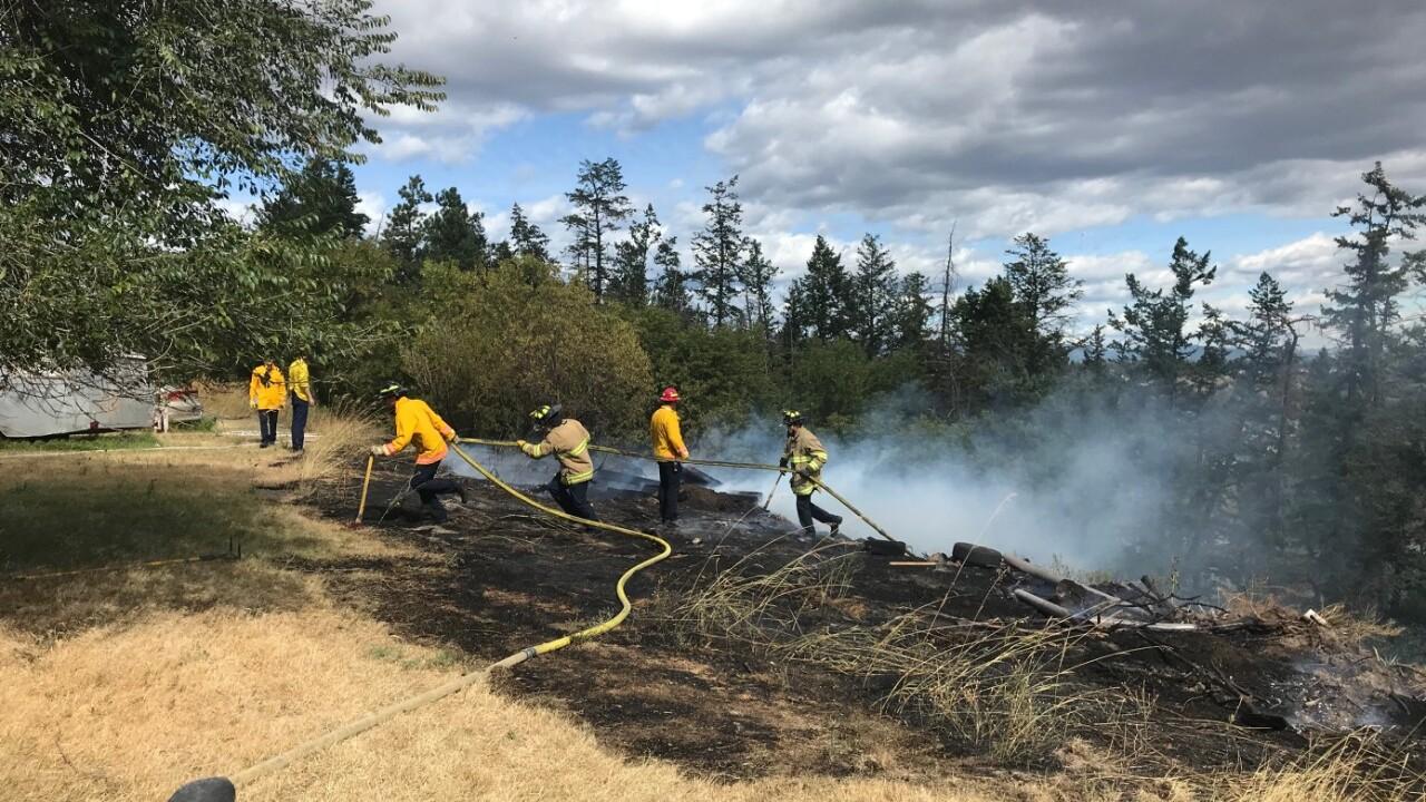 Evergreen Grass Fire 92