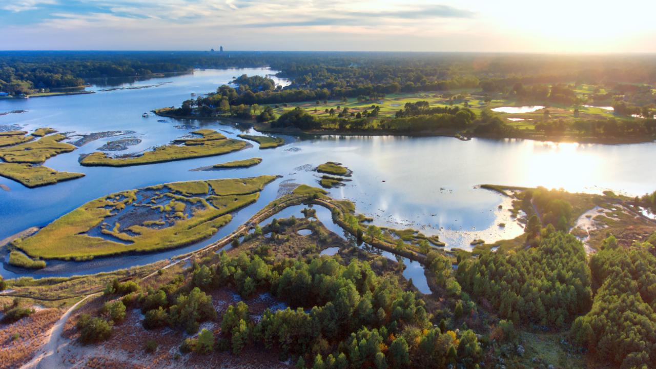 wx-VB wetlands.png