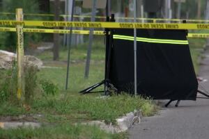 Homicide detectives investigating after jogger finds human head near road in St. Pete