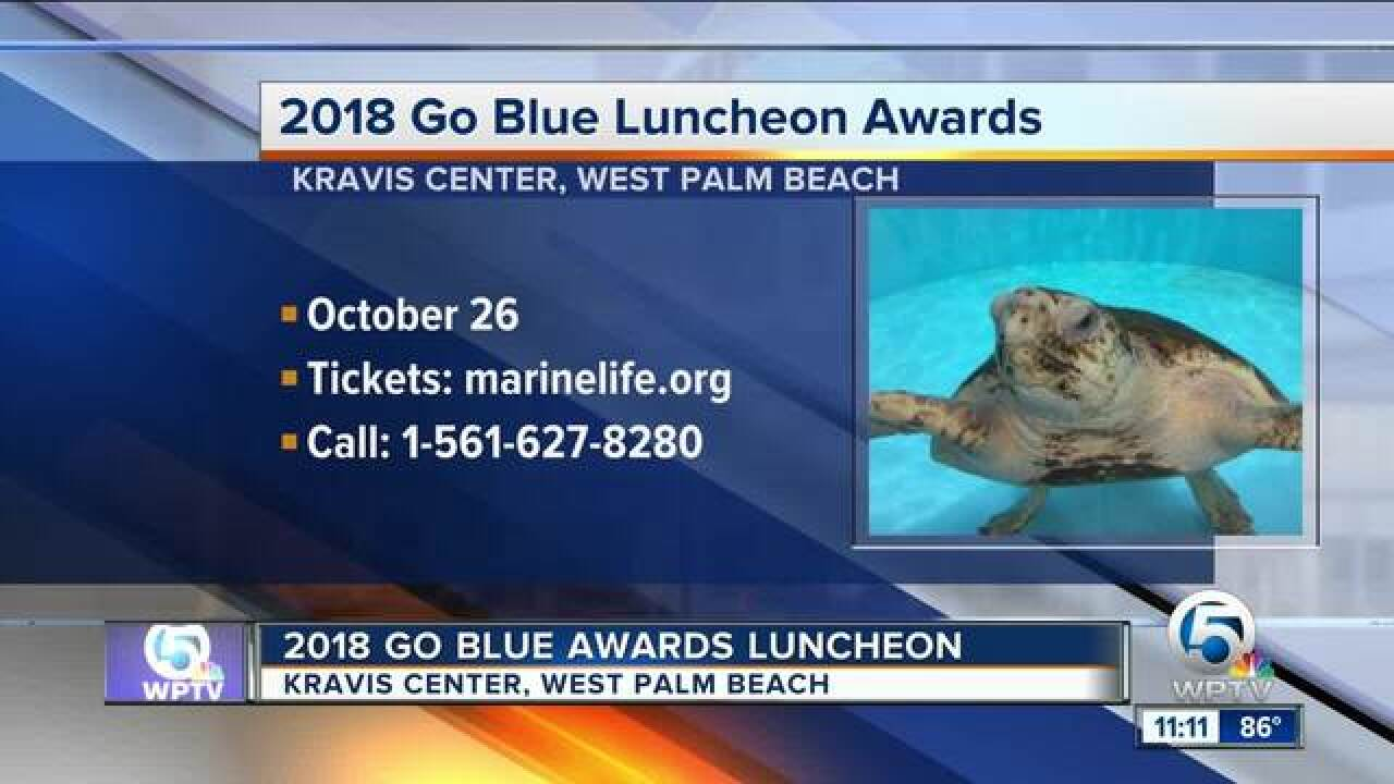 Go Blue Awards Luncheon