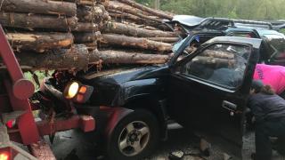 Driver survives harrowing crash as huge logs pierce car