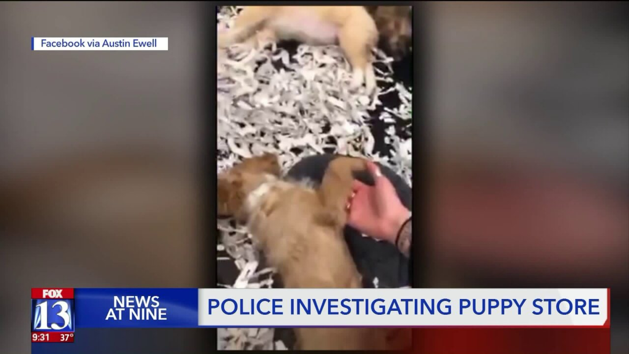 'Concerning' video of West Jordan puppy store promptsinvestigation