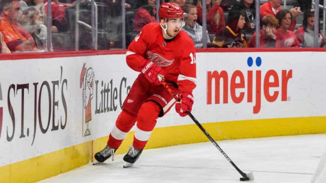 Red Wings assign nine, including Filip Zadina, to AHL Grand Rapids