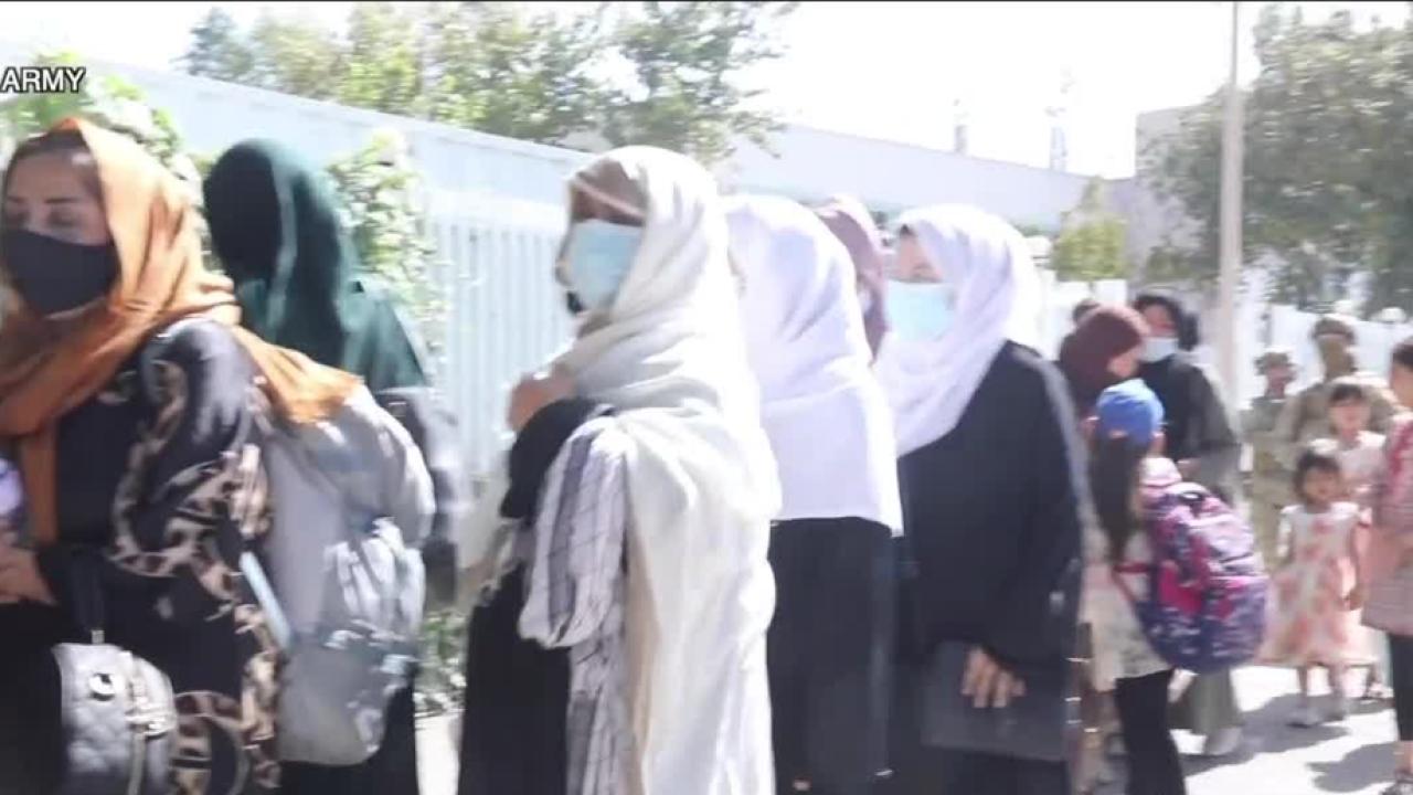 afghan refugees.PNG