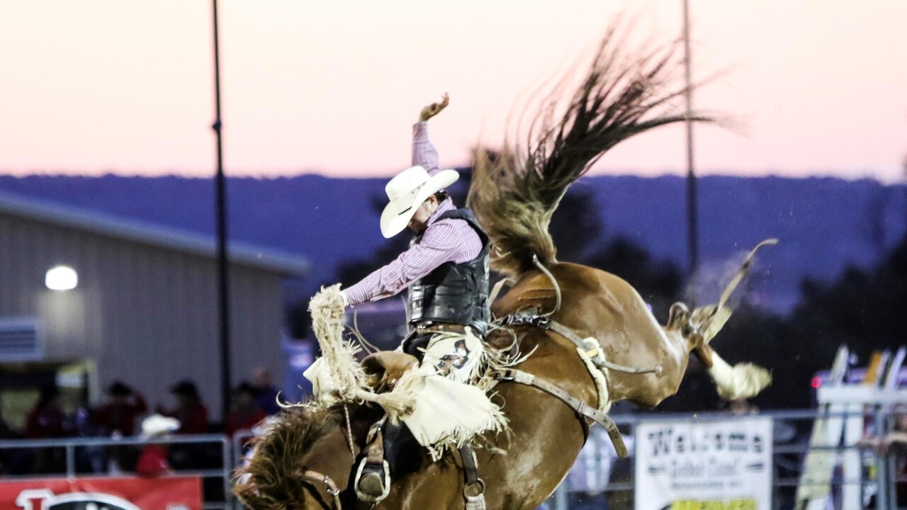 Chase Brooks Douglas County Rodeo