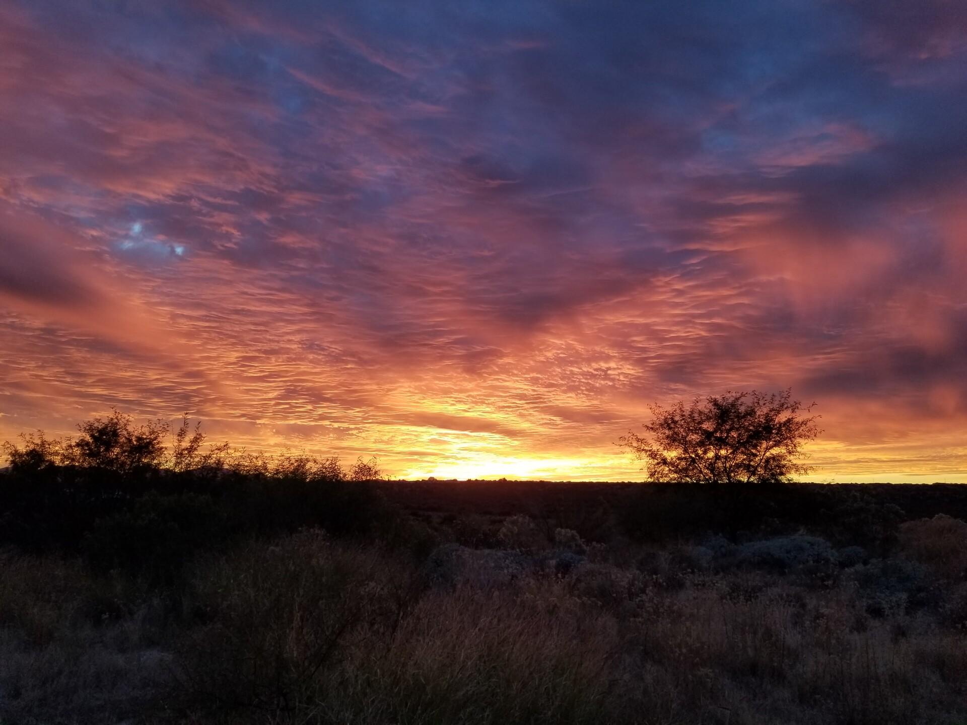 SUNSET- Dick Westphal Oro Valley.jpg