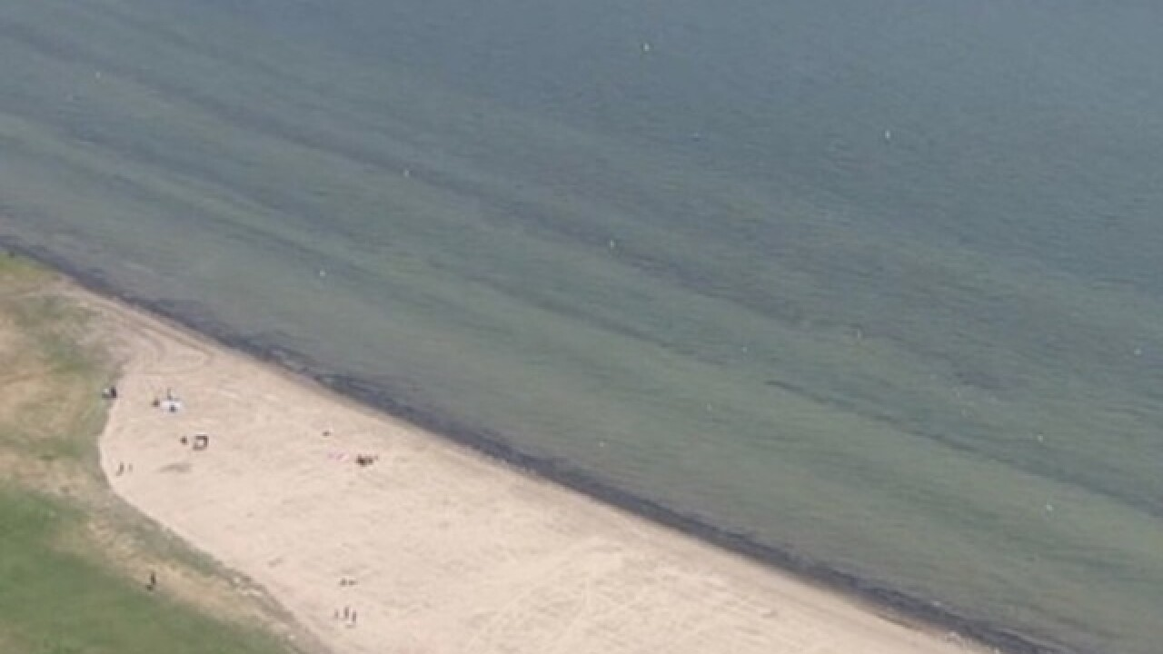 Several Michigan beaches closed due to high bacteria levels