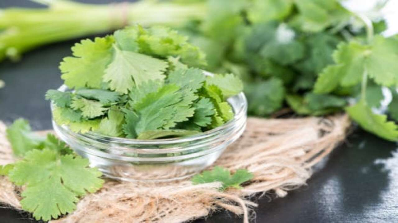 There's A Facebook Group For People Who Hate Cilantro With Nearly 250,000 Members