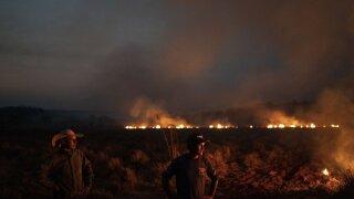 Brazilian troops fight Amazonian fires