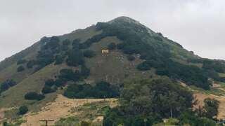 History of San Luis Obispo's huge hillside letters