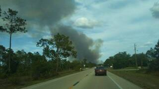 Lehigh Acres wildfire photos