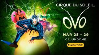 Cirque du Soleil OVO Ticket Giveaway