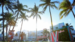 wptv-super-bowl-palm-trees-.jpg