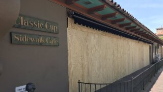 the classic cup plywood.jpeg