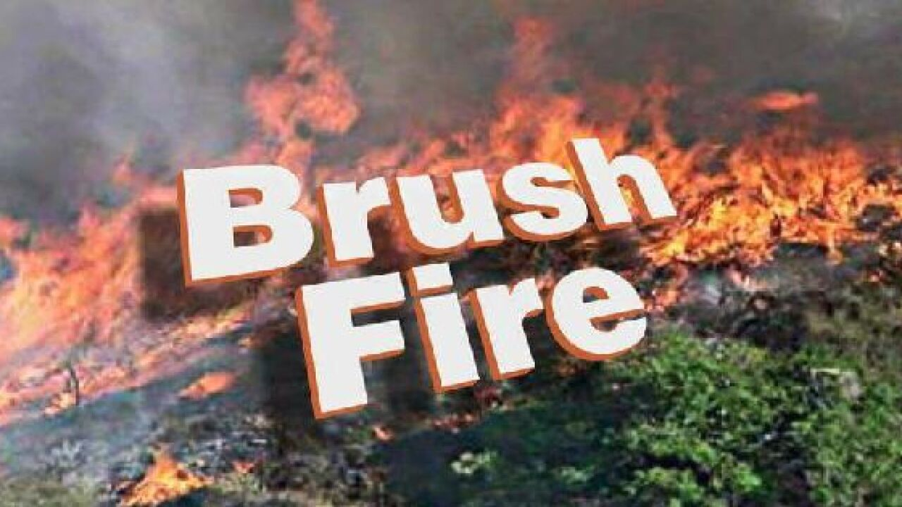 Suwannee Fire Rescue responding to brush fire