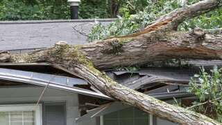 Did Wind Damage Your Home? How to Care for Your Roof
