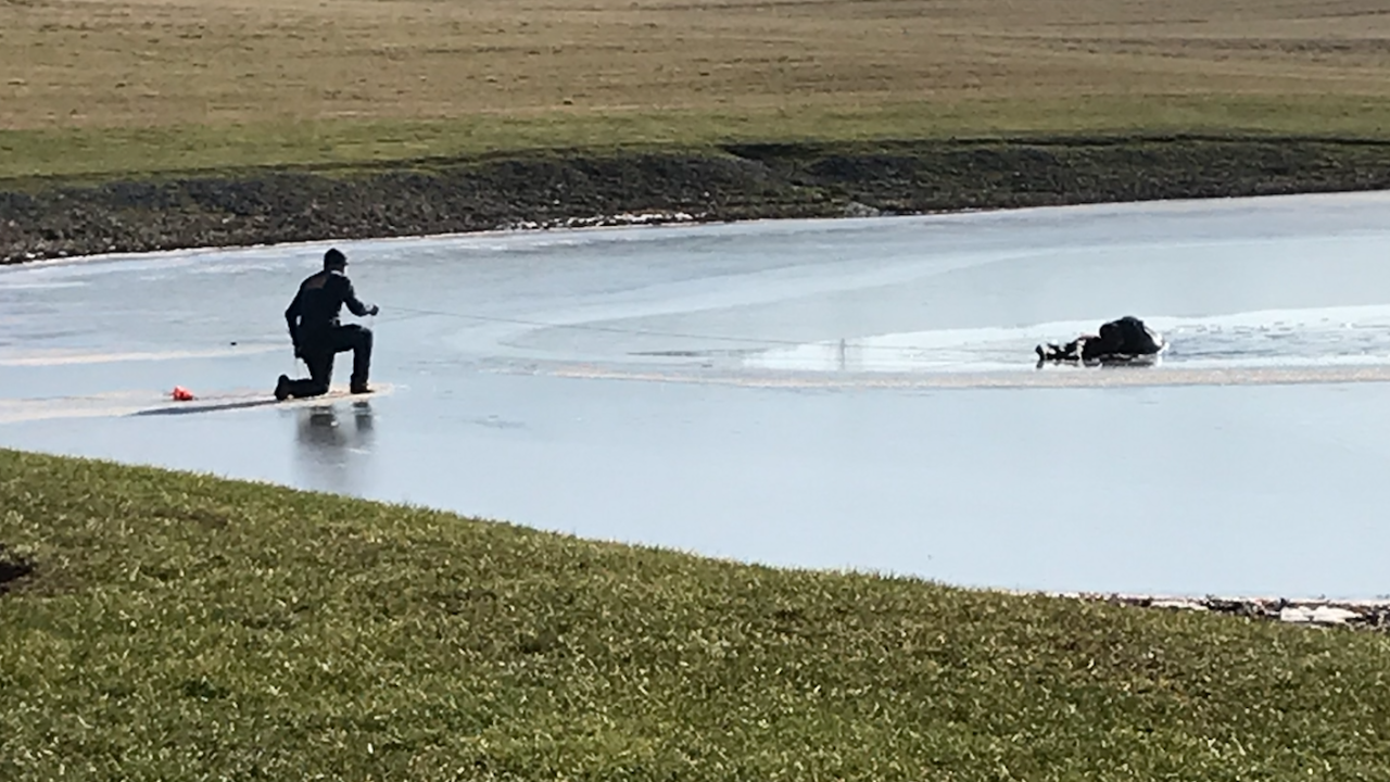 Wayne County pond rescue