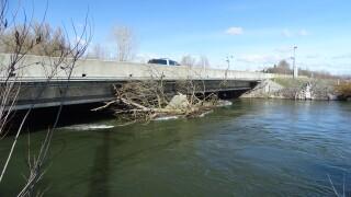 Debris caught by Eagle Road bridge.jpg