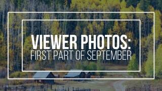 Viewer photos: September