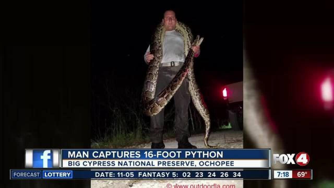 Dating a snake man