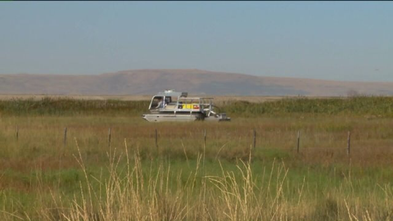 3-ton 'Marsh Monster' helping reclaim Great Salt Lake shorelands from invasive species