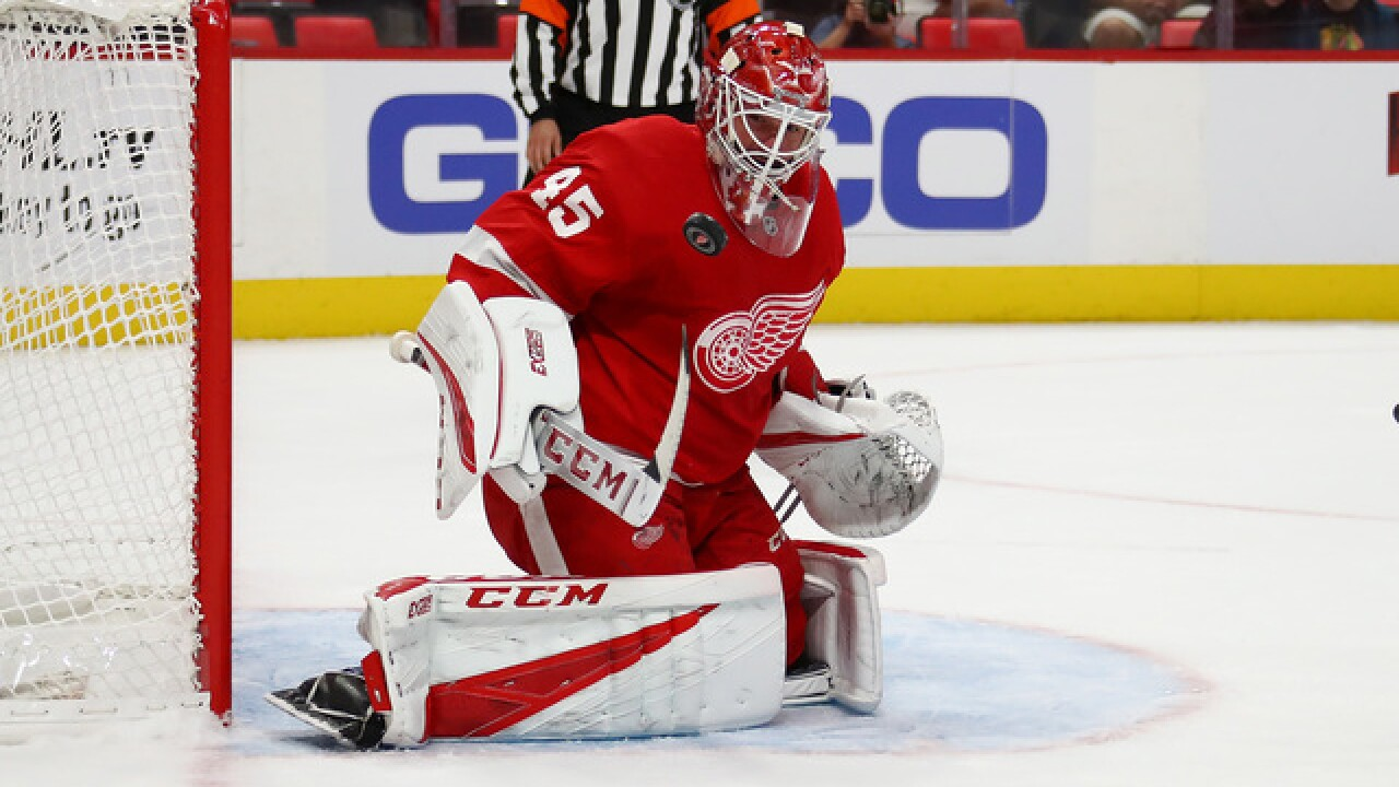 Red Wings goaltender Jonathan Bernier will be out through All-Star break
