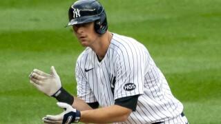 Yankees DJ LeMahieu Baseball