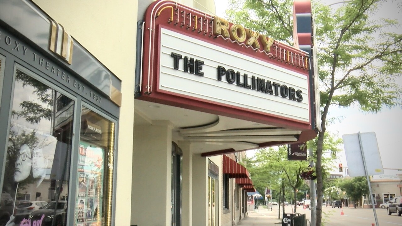 """Critically acclaimed """"The Pollinators"""" at Roxy Theater"""