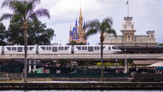 Disney World Stock