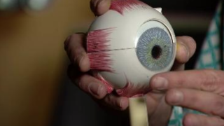 Contact lenses that reshape eyes overnight mean no contacts needed during day