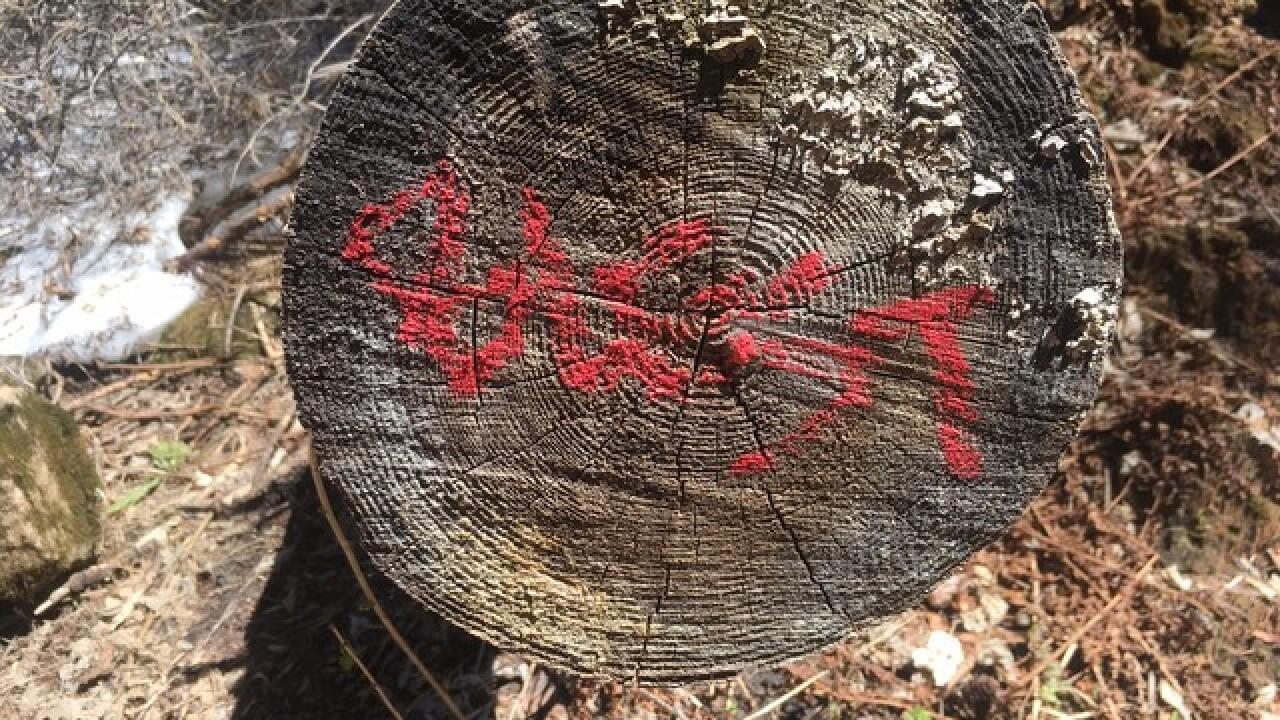Grafitti could close Hanging Lake Trail