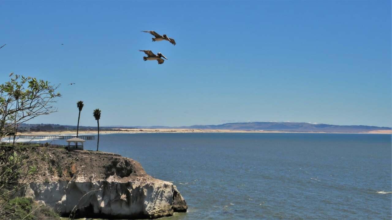CECIL HORTON - PISMO BEACH.jpg