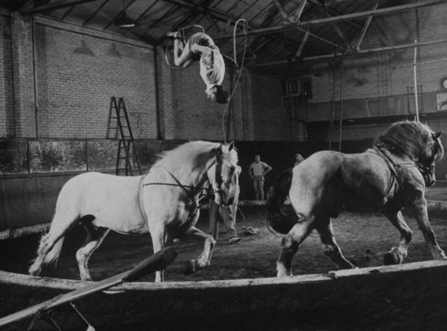Through the years: Ringling Bros. and Barnum and Bailey Circus