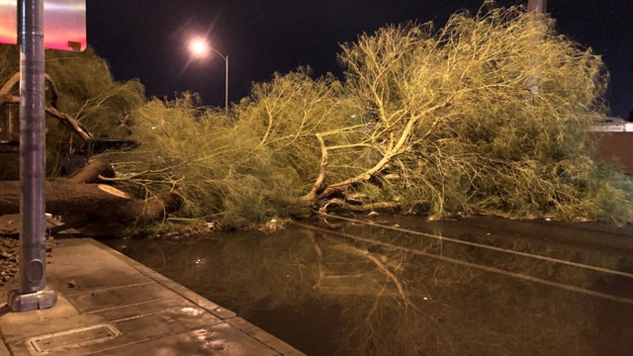 Trees fall on cars near Desert Inn, Cabana