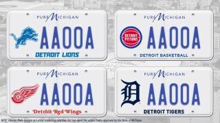 Michigan sports teams license plates.jpeg