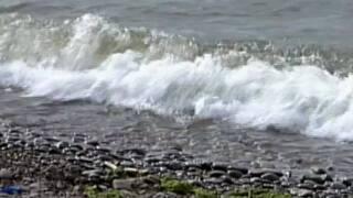 Olcott Beach unsafe for swimming
