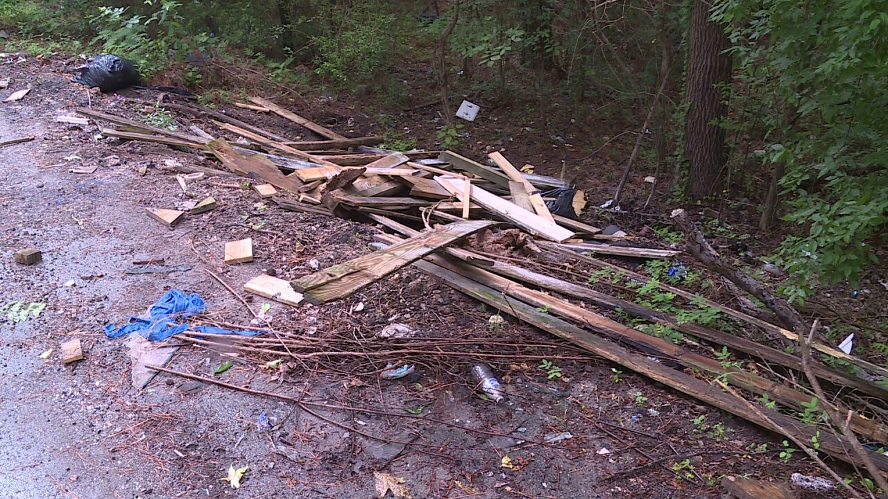 When city will clean up 'trash hole' in secludedneighborhood