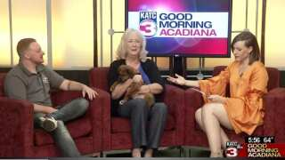 Acadiana Animal Aid to host 20th annual Bark in the Park