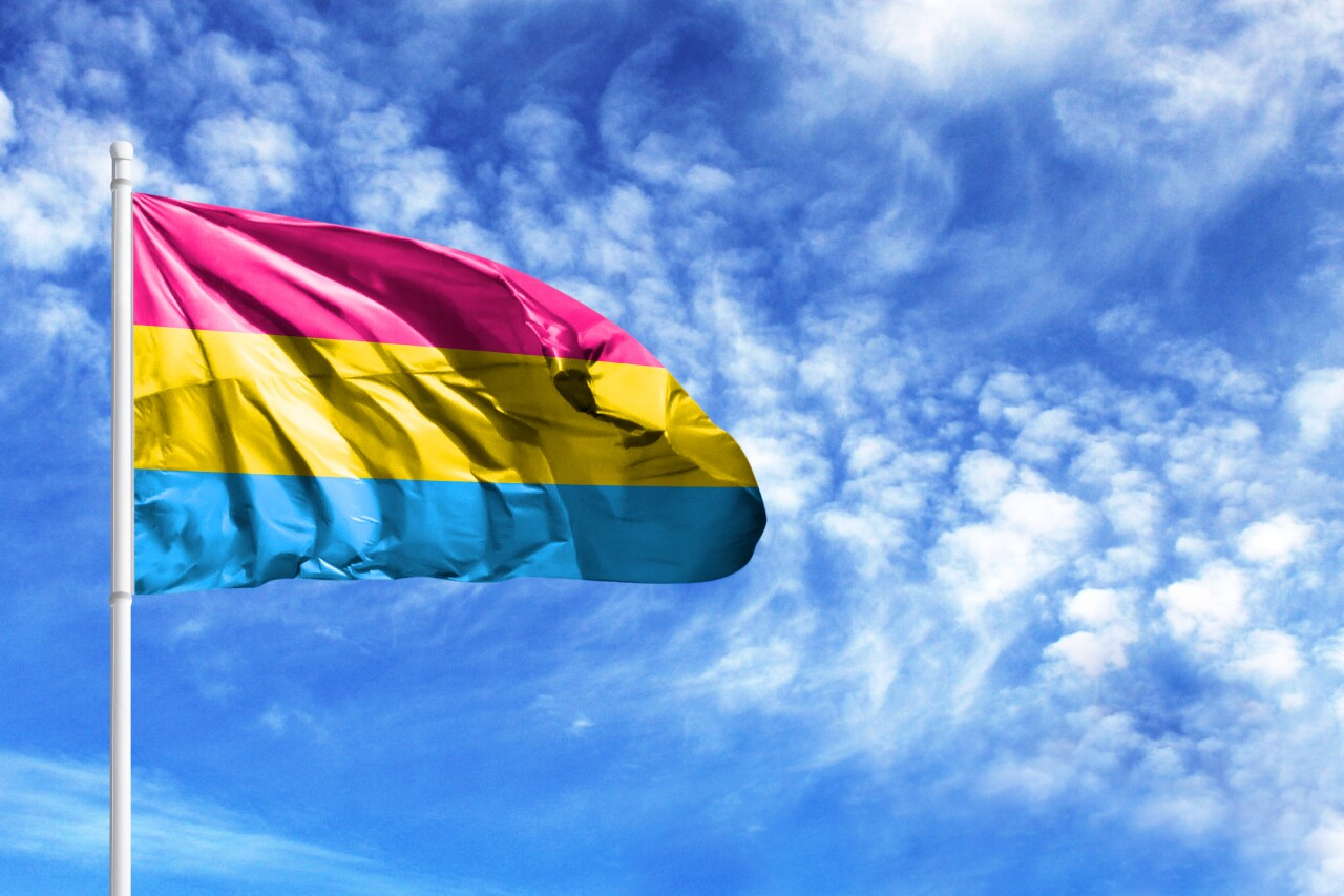 National,Flag,Of,Pansexuality,Pride,On,A,Flagpole,In,Front