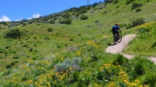 BLM wants the public to weigh in on Ridge to Rivers trail development plan