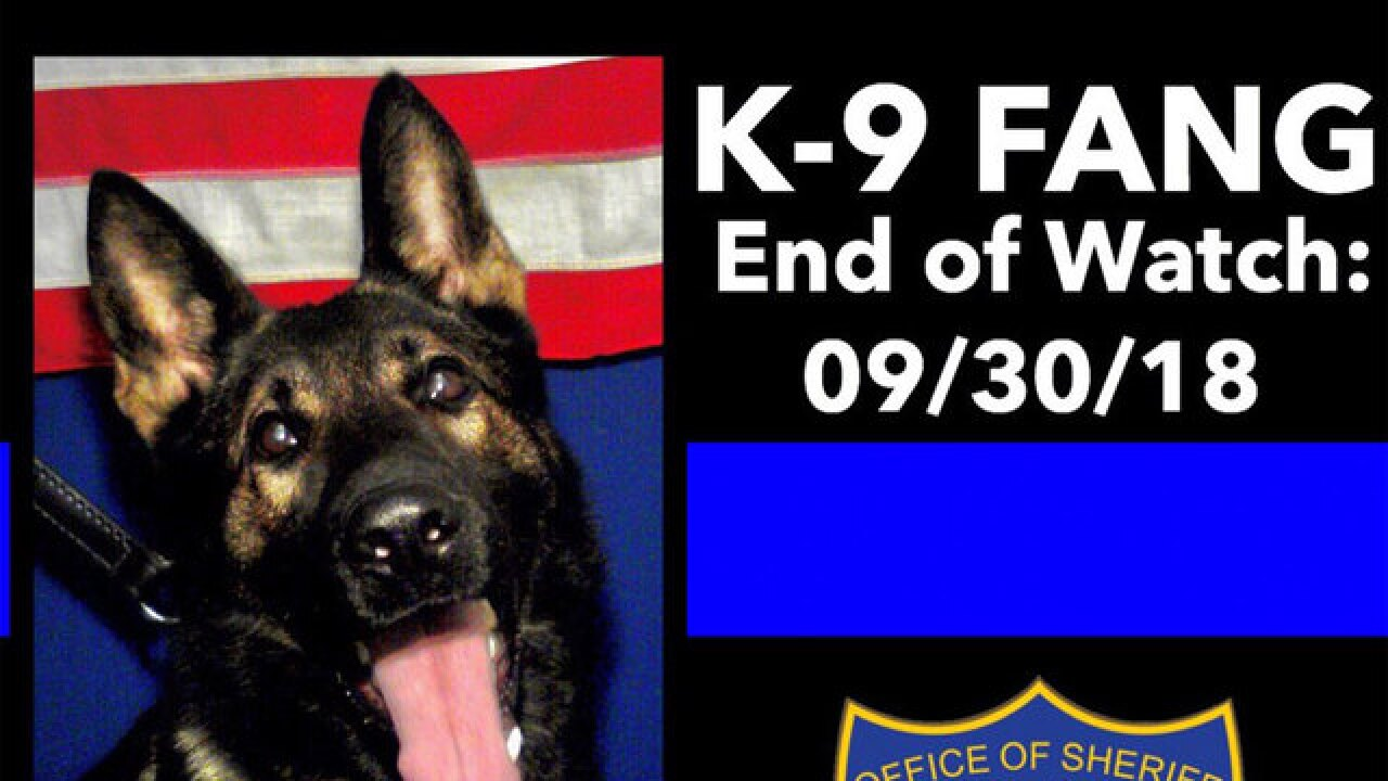 Jacksonville police K9 dog named Fang killed by carjacking suspect
