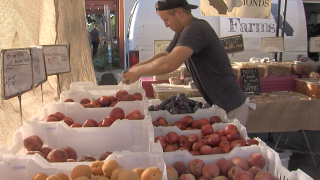 Entrepreneurs fight over fate of decades old farmers market
