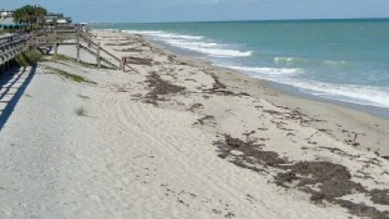 wptv-indian-river-county-beach.jpg