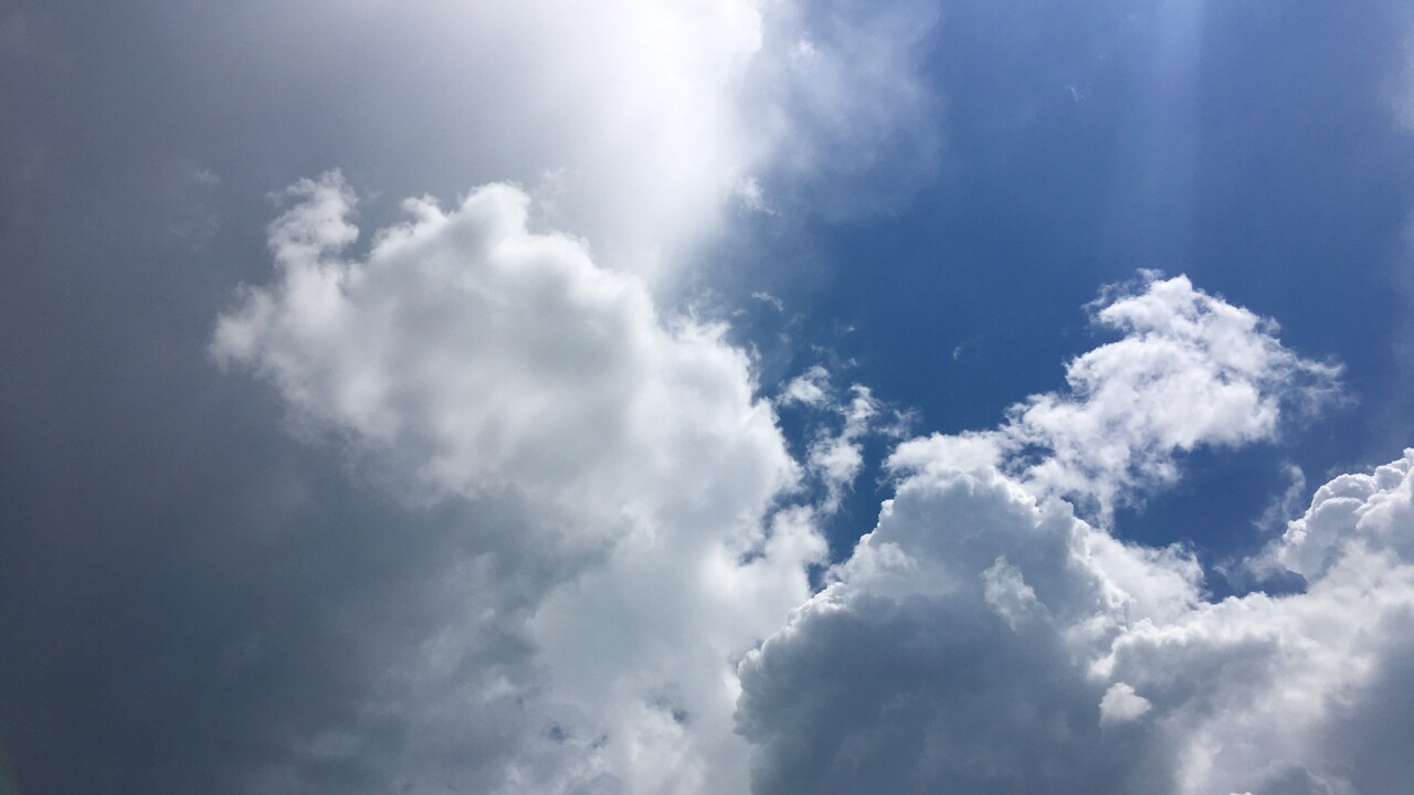 tropical t_shower looking up.jpg