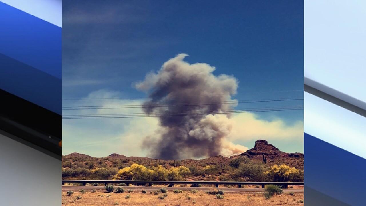 FD: Fire burning on Bush Highway near Mesa