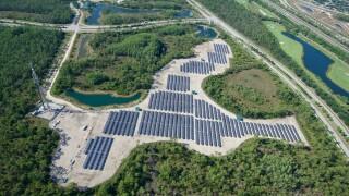 FGCU named Florida's top green school