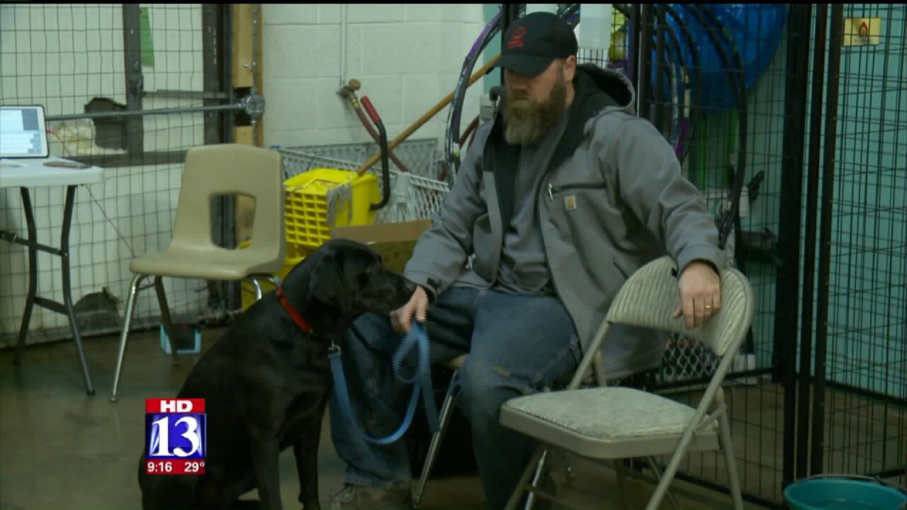 '4 Paws 4 Patriots' expands service dog resources to Salt LakeCounty