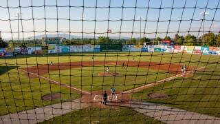 Baseball net netting