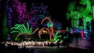 Denver Zoo Lights 2018